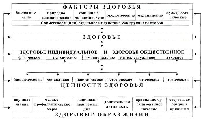 Примерная схема режима дня